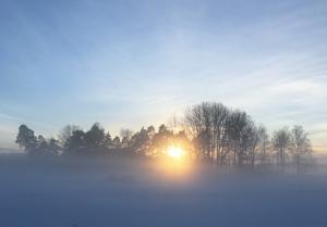 vinter17